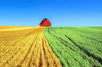 Casella.it: liderando la tecnología agrícola